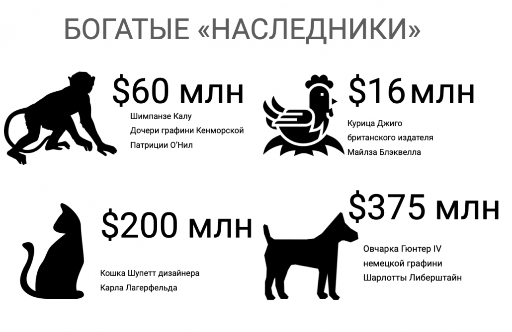 Миллионы для кошки Лагерфельда — как работает необычное наследство